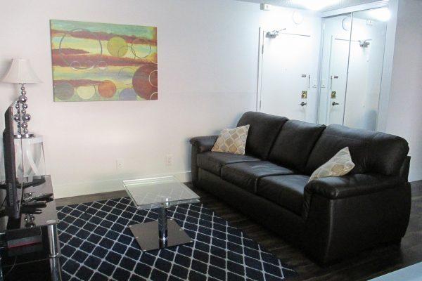 Modern, clean, bright furnished 1 br
