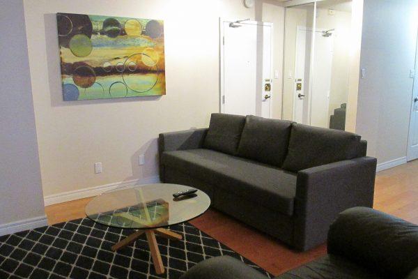 Modern, clean, bright 1 br furnished condo